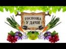 20 06 2017 Госпожа у дачи - Украшение сада и сооружение Альпийской горки
