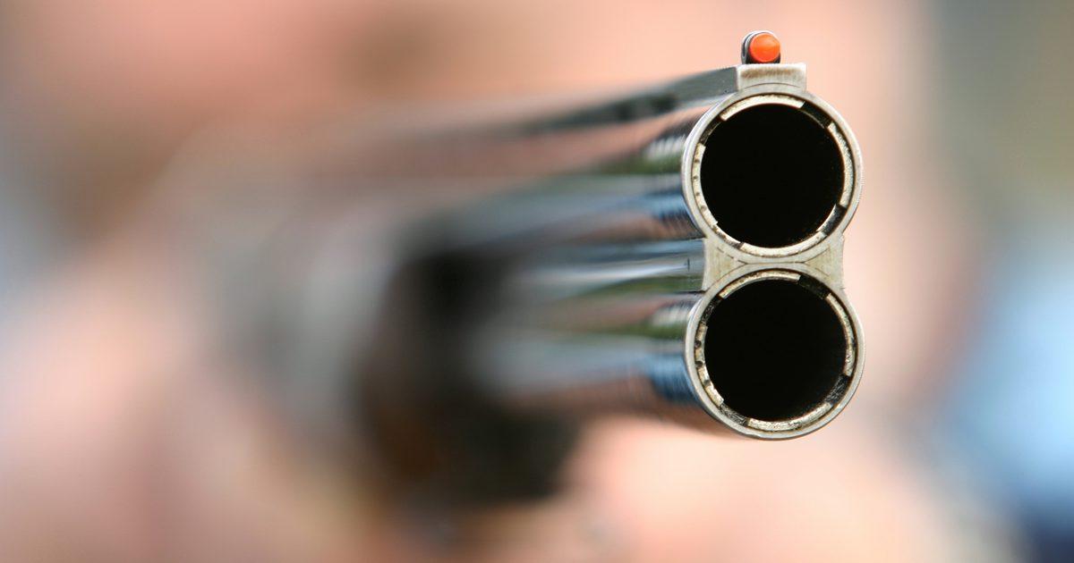 Томич застрелил жену из ружья и пытался покончить жизнь самоубийством.