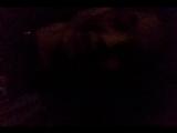 Deniz Aladzhahan - Live