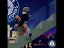 Новый рекорд Книги Гиннесса 20 ступенек на задних лапах за 7 47 секунды
