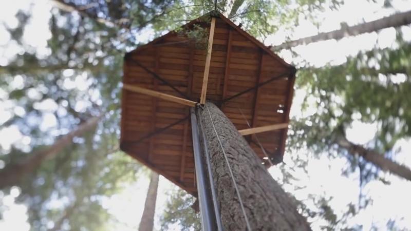 -Дом на дереве. Жизнь в лесу вдали от цивилизации-