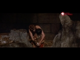 рыжая соня tv-1000 action