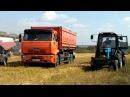 Уборка озимой пшеницы Тульская область с.Малевка. Harvesting of winter wheat.