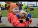 Песня Пропала Собака в исполнении Татьяны Жареновой