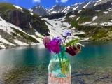 Розыгрыш бесплатного места в поездке на Дуккинские озера 8 июля. Архыз