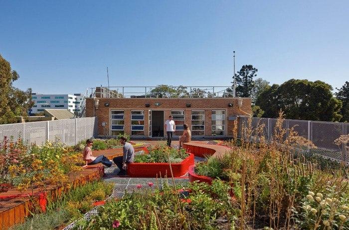 Парк на крыше университета.