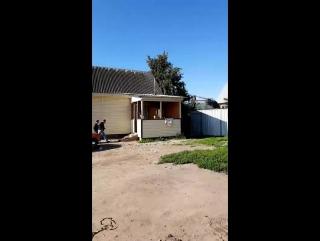 Снос цыганских домов в Плеханово. Тула