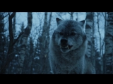 Game of Thrones. Сезон 7 (Игра Престолов). Арья Старк идёт на Север