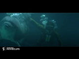 Best scene - Rescued by Dolphins - Jaws 3-D (2/9)