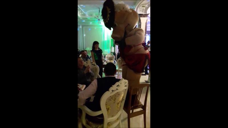 26 12 2017 Мис Сис НЮша г Артем Штыково ресторан Шик