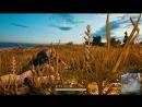 PlayerUnknowns Battlegrounds ЧИТЕРЫ НЕ НЕ СЛЫШАЛИ