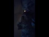Как я посмотрю Новый клип Трой Сивана