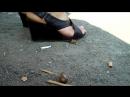 Candid crush snail 4