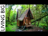 Enchanting Cabin In The Forest