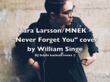 Zara Larsson &amp MNEK - Never Forget You (DJ Selphi bachata remix) William Singe cover