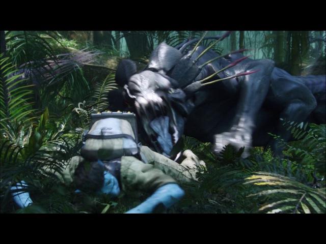 Аватар против Палулукан (Танатор) Avatar vs. Palulucan (Tanator) \\iMoment.RU\\