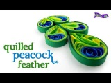 Interesting Quilling Peacock Feather