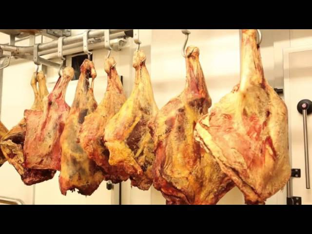 PRECOM LLC Meat Processing Plant
