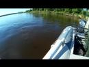 Рыбалка на сома с квоком - вот это мы порыбачили