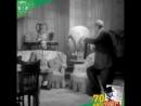 Um adepto bem conhecido e uma cena inesquecível O Leão da Estrela estreou há 70 anos 🙌