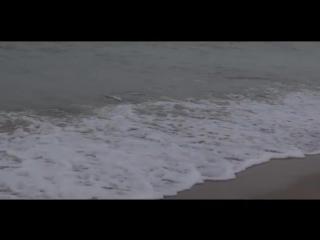 vZatoku.com: зимнее море, Затока