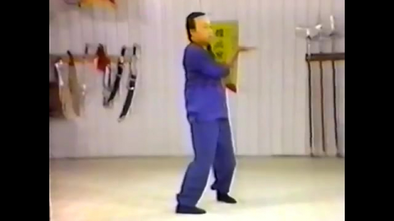 Августин Фонг винчун 3 одиночная техника сию лим тау Часть 3