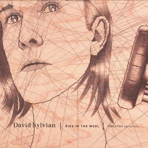 David Sylvian альбом Died In The Wool - Manafon Variations