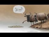 мыйы жок деп осыны айтса керек