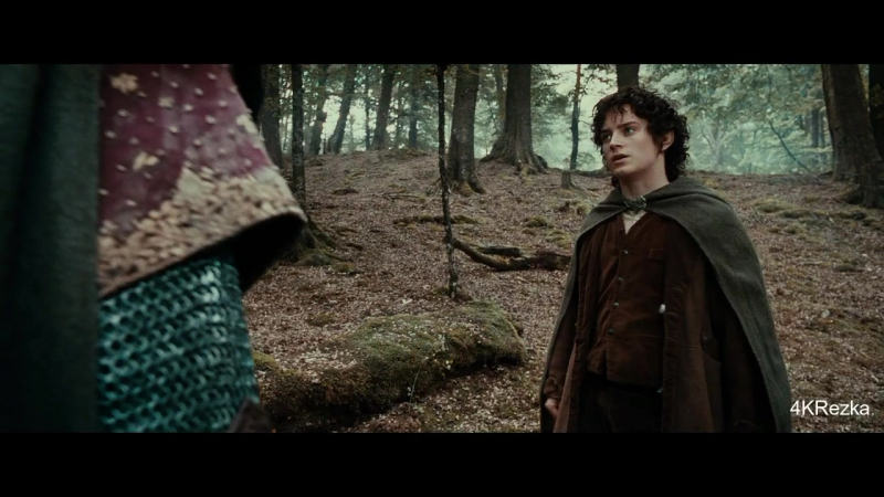 Боромир требует от Фродо отдать ему Кольцо