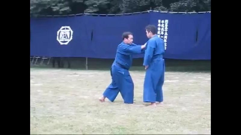 Ju Jutsu Ягю синган Рю