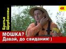 МОШКА? Давай, до свидания! ) ЗАЩИТА ОТ МОШКИ (Братья Щербаковы) 4К
