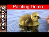 Painting Water, Reflections, Feathers - Oil painting Jason Morgan wildlife art