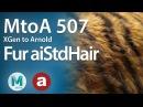 MtoA 507 XGen Fur with aiStandardHair