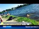 Ярославец на пляже спрыгнул с вышки и не долетел до воды
