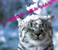 спервым днем зимы!!!!