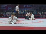 Tumashev Ivan vs Moisseyev Dmitriy - Чемпионат мира KWU 2017  - FullHD
