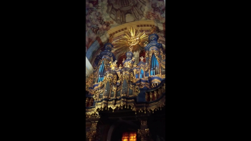 VIDEO0128.mp4 Полонез Огинского.Св.Липки.Польша.07.01.18.