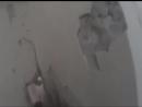 короткое видео от первого лица, как кабардинцы с балкарцами воевали против запрещённой в России террористической организации ИГ