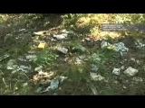«Кладбище» вскрытых посылок в Липецкой области