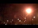 Чёрный дрозд - начало декабря, 03:00