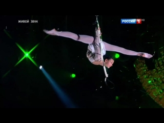 Синяя птица ТОП-5 самых популярных цирковых номеров