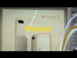 Старт продаж iPhone 8 и iPhone 8 Plus в салонах «Билайн»