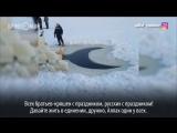 Татарский певец сделал прорубь на Крещение в форме полумесяца