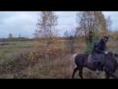 Памир Померанец и Денис осенние поля и прыжки через канавы 4 в Щеглово 15 10 2017