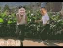[小苹果]金三胖····[the little apple] —Kim Jong-un