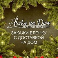 Логотип Ёлка на дом! Закажи праздник! Краснодар