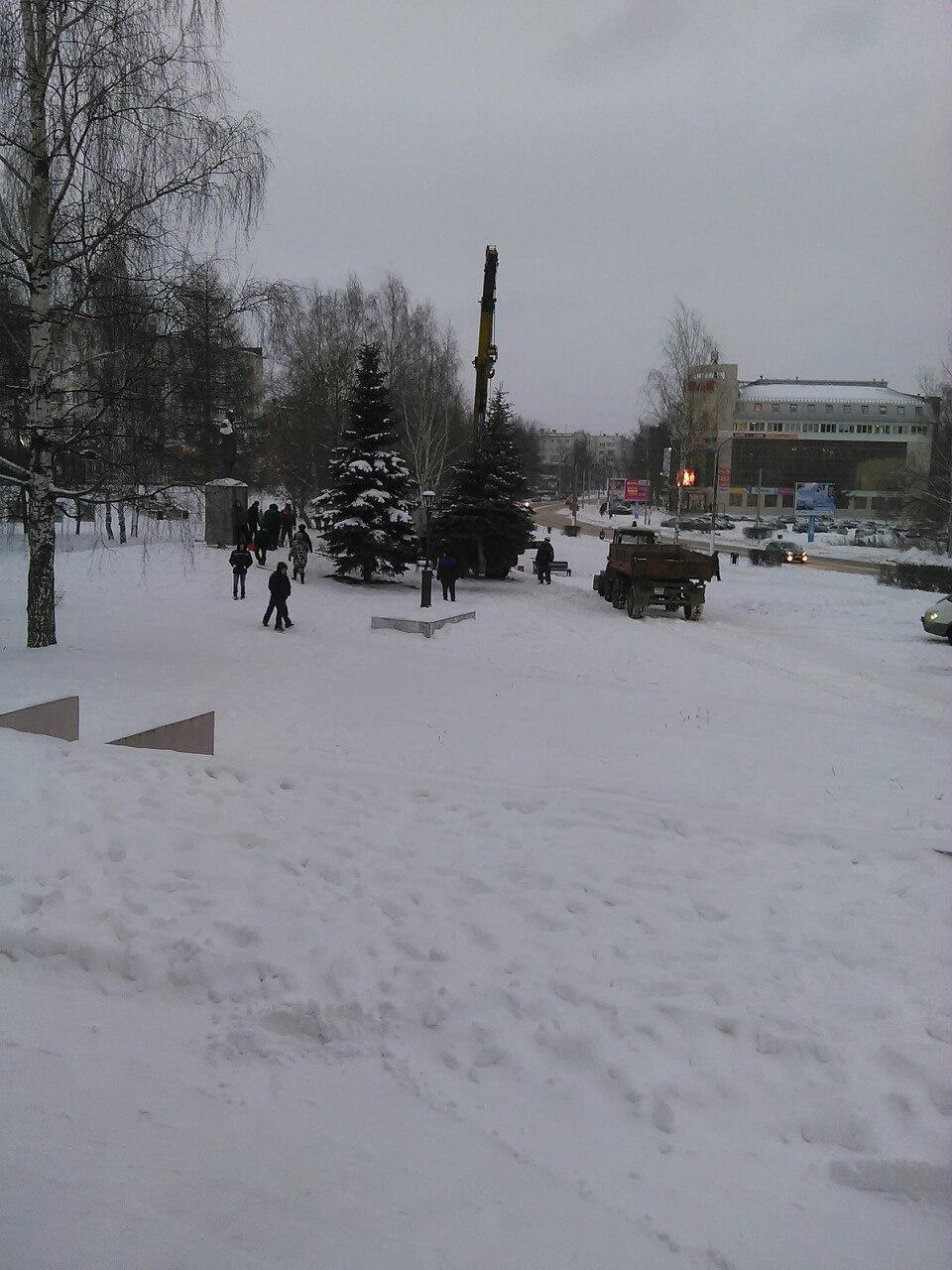 памятник П.и. Чайковскому, сруб елей, Чайковский, 2017 год
