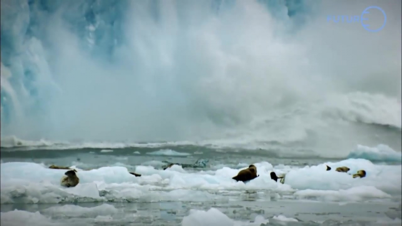 Polar Sea 360° - Bande-annonce