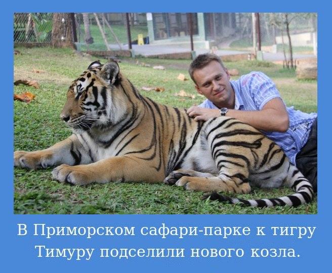 https://pp.userapi.com/c841534/v841534988/747f3/W-YAAA1kC5I.jpg