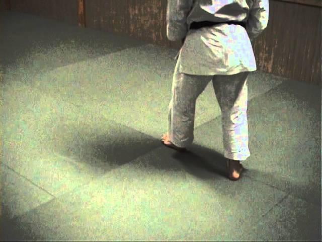 Aikido Taisabaki movement